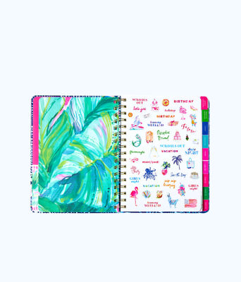 2018 - 2019 17 Month Large Agenda, Multi Party Wave Planner, large 2